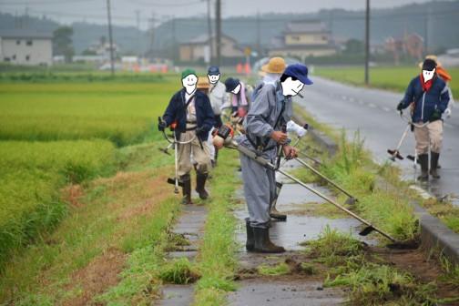 手近な水路から刈り始めてその後、田んぼの脇の歩道をきれいにしながら進みます。もしかしたら守備範囲じゃないかもしれませんが、子供たちの通学路でもありますし、こういうシームレスなところも地域住民主体の活動ならではだと思います。