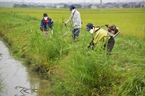 平成26年度8月の環境保全会の活動