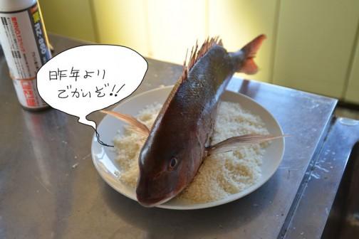 どこのお祭りにも不思議な風習?があると思います。大場町島地区にあるのはこれ。宴会を終わらせるリーサルウェポン(名前誰か教えてください)鯛です。
