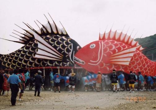 愛知県の教育ネットワーク(http://www.aichi-c.ed.jp/contents/syakai/syakai/chita/chi203.htm)にこんな記載がありました。1887年(明治20)前後に船大工の森佐兵衛という人が,中洲神社の祭礼に出した「はつかねずみ」が始まりである。その後,豊漁を願い,土地柄に合わせて魚を作るようになり,現在のような大鯛が作られるようになったのは大正時代になってからである。大鯛の大きさは最大のもので長さ19メートル,高さ6メートルになるものもある。毎年7月下旬の最も潮の引く週末に行われ,多くの観光客も訪れる。祭りは中洲,半月,中村,鳥居,東部の5地区がそれぞれ作った5匹の鯛みこしが登場し,約60人の担ぎ方に担がれた大鯛のみこしをおはやしとともに,町や海の中を練り歩く。祭りの終わりごろには鯛みこしの勇壮なぶつかり合いがみられ,その迫力に圧倒される。