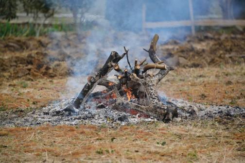 あんなに大きかった炎も、作業しているうちにこんなに小さくなってしまいました。