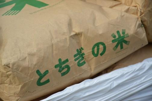 なぜかなぜか種もみはとちぎ米の袋に入っています。もしかしたら、中古品の袋は栃木のものは茨城へ、茨城のものは栃木へと、混同防止のために相互に行き来してたりして・・・