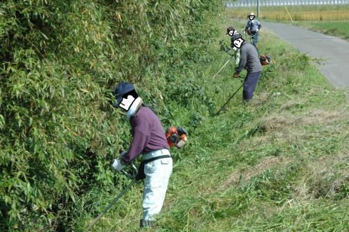 水路の法面の草刈り。