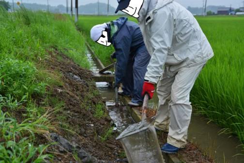 同じく側溝の泥上げの写真も・・・物珍しさもあってスライドモアの写真ばかり撮っていたので、前回は撮り忘れが多かったです。そういえば今回、スライドモアは出動していなかったなあ・・・
