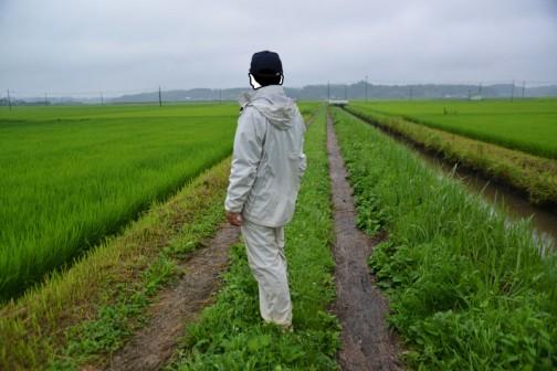 農道の点検。梅雨らしい雨模様です。