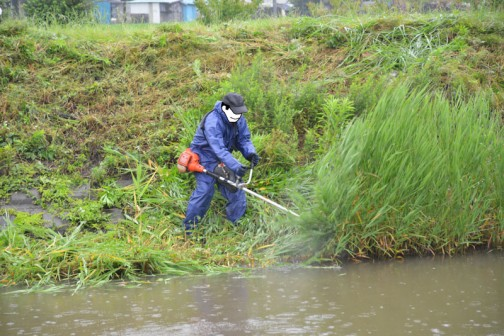 水戸市大場町島地区、環境保全会7月の活動。