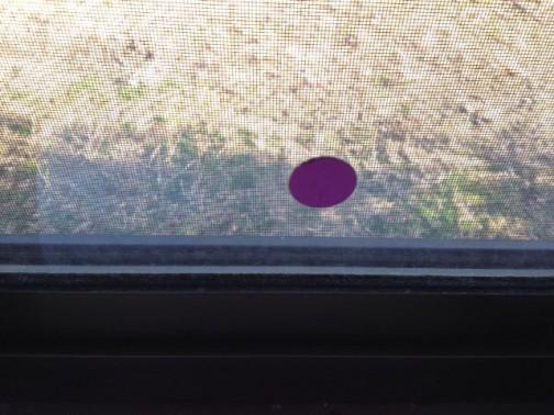 こんな小さな穴でガラスを交換するのは悲しいので、裏表からシールを貼っています。