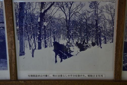 冬期間造材山で働く、時には暮らしの半分を助けた。昭和20年代