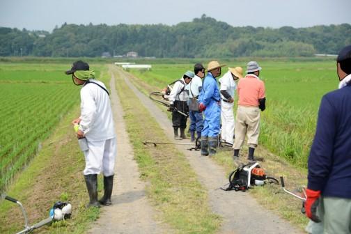 ⑤ああ・・・もう地図で書いた部分を追い越してしまった。田んぼが多く集まる地帯の農道に来ています。ここまで結構な距離。