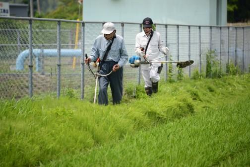 ⑧草刈りはラストスパート。揚水機場まわりを刈ると、刈りながら戻ればゴールはもうすぐです。