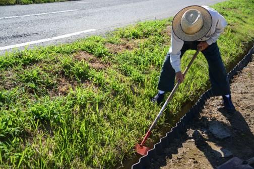 彼岸花を植えている法面の下の側溝の泥上げをします。ここは子供達やお母さんたちがお世話をするので、足場のためにフタをする予定なんです。