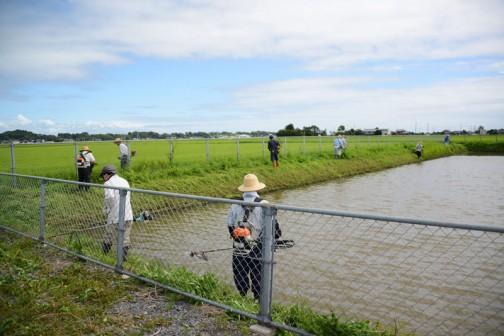 これは農地維持活動の「ポンプ場、調整施設等の草刈り」ですね。