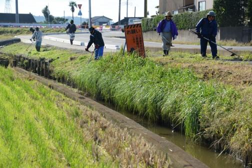 そうこうしているうちに2手にわかれている草刈り部隊がやってきました。水路の草刈りといったところです。