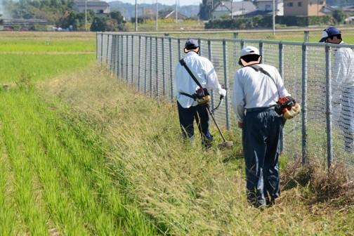 機場に隣接する畦畔の草刈りもフェンスに添ってぐるっと行います。