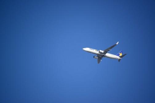 お茶の人たちも上を飛んでいくボーイング737-800。ジェット機が飛ぶコースって結構幅があるんですね。こんなところを飛ぶこともあれば、2〜3キロ離れた高速道路の上あたりを飛んでいくこともあります。