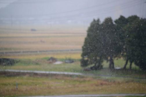 もちろん季節は冬。そういえば11月24日には雪だって降ったんでした。