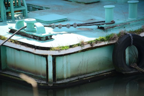 あまり使われている・・・という感じではなく、船には草が生えていました。