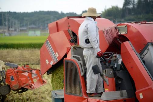 飼料稲は稲だったら「実」の部分であるお米だけでなく、葉や茎も利用するので普通の稲刈りより季節的に早く、暑い季節から稲刈りが始まります。これが結構過酷なわけですが、今年はファン付きの空調服をみな導入していたんです。