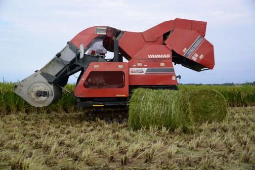 ちょっといつもと違う視点で・・・こうやって見ると稲刈りをする鎌に当たる部分と、刈った稲を丸める胴体の部分を除く機械部分、ずいぶん小さいことがわかります。「これ以上小さく作れません」というぐらい、コンパクトに機能を詰め込んだ形だったんだ。
