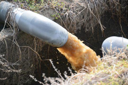 例年だとずっと黒い水が出るのですが、今年はなぜか黄色い水が混じりだしました。聞くと、今年水管橋の地中化行なったそうで、そのせいでパイプ内に空気や土が入っているのだろう・・・ということでした。なるほど。