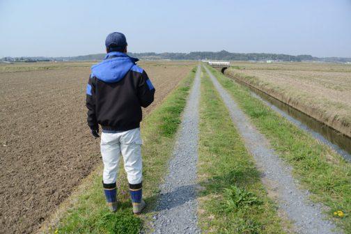 泥掃きのバルブを開けたり閉めたりしながらついでに点検をして回ります。これは農道の点検。