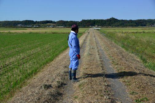 それと一応点検写真。農道の点検。異常なし。