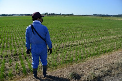 もちろん農用地も異常なし。