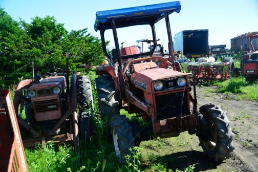 農研機構の安全鑑定は1978年登録でした。