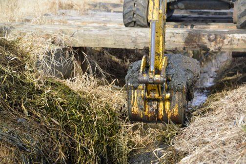 逆に草の少ないところは泥が多いのだそうです。