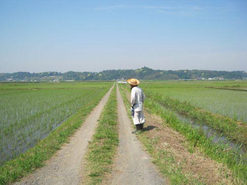 そして農道の点検です。キャノンのデジカメは色がハデだなあ・・・