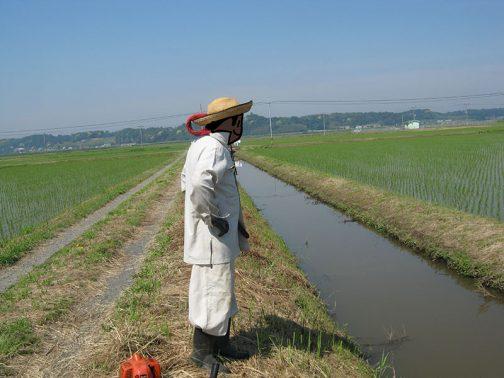 各施設の点検もお願いしていました。これは水路の点検の写真ですね。