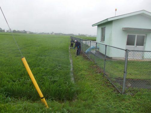 機場の周辺と、農用地法面の草刈り。ついこの間田植えをしたばかりのように思えますが、稲はもうこんなに大きくなって水面は全く見えません。
