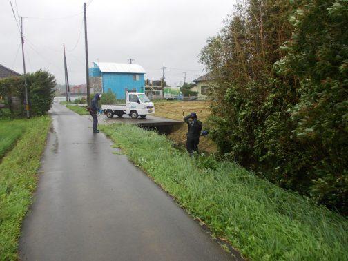 水路の法面の草刈りです。家の者に聞くと「朝は台風並みの暴風雨」だったそうです。他の日程との絡みもあり、延期や中止の選択肢がなかったと思われます。