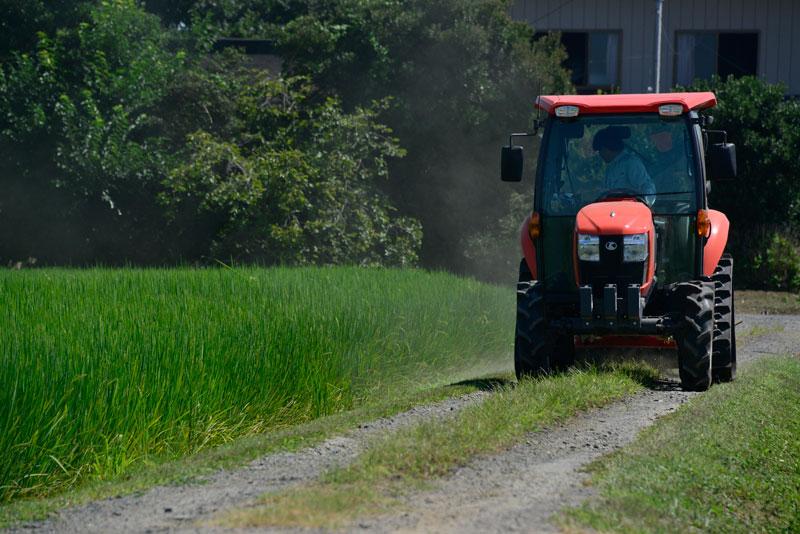今日はこんなところです。あー僕ももうちょっとしたら草刈りしなくちゃ・・・それではまた明日!