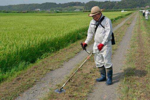 農道部分の刈り残しも、もちろんおなじくやっつけます。