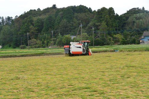 この写真で行くと、左から右に向かって刈って行き、田んぼの端まで行ったところでバックして戻る感じです。