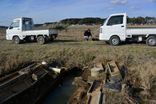 下流側はヒューム管を通って農道の下を潜り大排水路にあたって行き止まり。その行き止まりの大排水路の柵板を少し持ち上げて水を抜いていたのです。