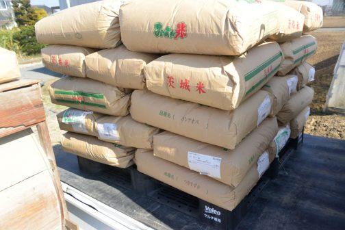 軽トラに積まれているのは飼料稲の種籾。