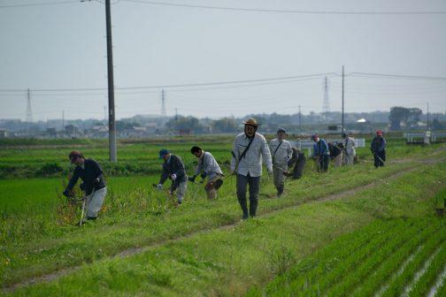 大きな排水路に展開して法面と農道の草刈りです。