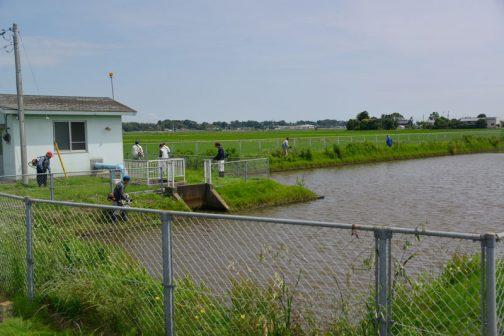 揚水機場の中や周辺の草刈り。比較的スタート地点から遠いこの場所から草を刈りながら戻ります。