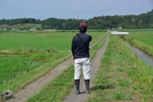 農道の点検。