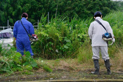 こちらのチームはコアな部分ではないため放置期間が長くかなり背の高くなってしまった場所の草刈り担当です。
