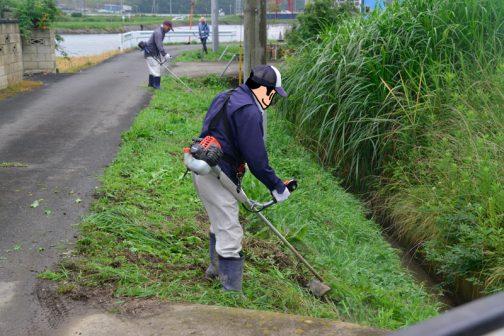 もうひとチームは水路の草刈りです。