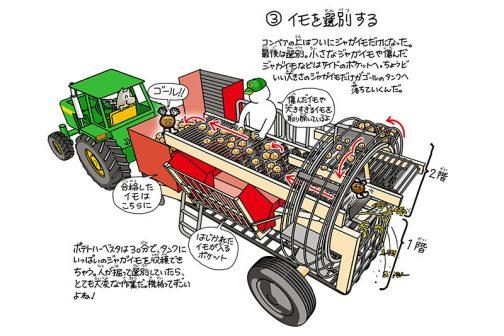 拾ったイモを観覧車のようなゴンドラで上に運んで乗った人が悪いイモを弾いて最後にタンクに貯める・・・そんな機械でした。