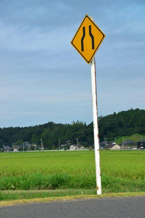 なんでもないんですけど、黄色い標識、好きです。