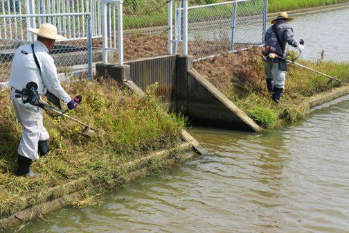 さらに移動して揚水機場周辺の草刈りです。