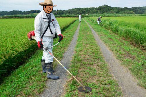 移動して農道を刈ります。Mさん、視線いらないです。