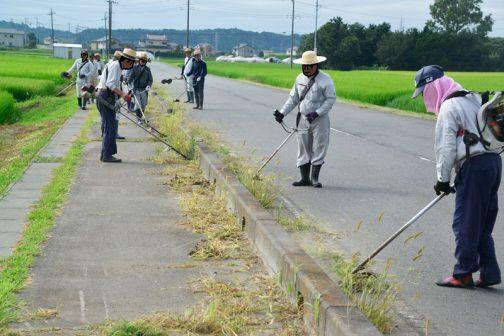通学路でもあるし、田んぼのある風景としても、これ、絶対にやるべきだと思います。ここの正規の草刈りは年に一遍しか来てくれないんですもの。