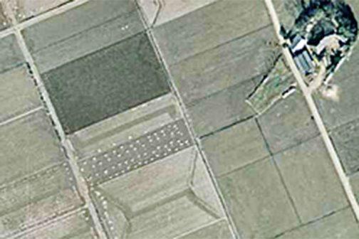 ところが1975(昭和50)年では四角く田んぼが整理されています。畑は残っていますが、細い道はなくなってしまいました。