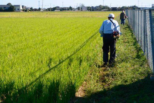あっという間に中間地点です。農用地法面の草刈り。